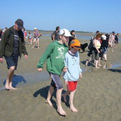 Watt is? – Wattwandern und andere Freizeitaktivitäten